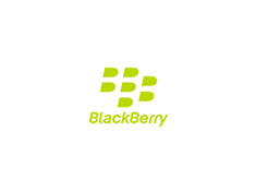 BlackBerry Application Development image