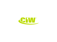 CIW Web Foundations image