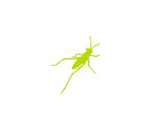 Grasshopper 3d image