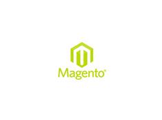 Magento development image