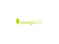 mongoDB image