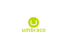 Umbraco Theme Development image