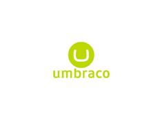 Umbraco Theme Development image
