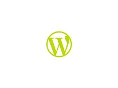 WordPress Theme Development image